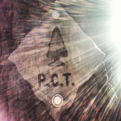 PCT Sign