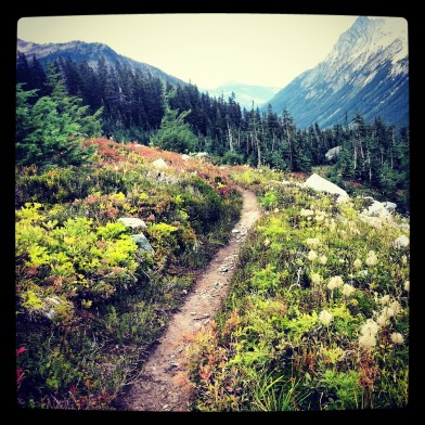 PCT Washington Trail